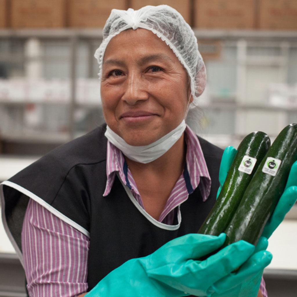 organic-sustainable-farming-rico-farms