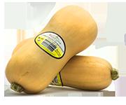 Organic-food-productions-rico-farms